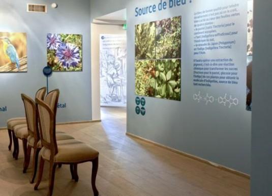 4-terre-de-pastel-spa-museum-Toulouse