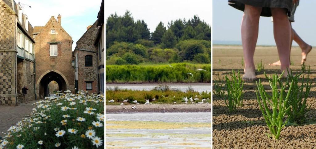 Vakantiehuizen-Picardie-Baie-de-Somme-Frankrijk-nl
