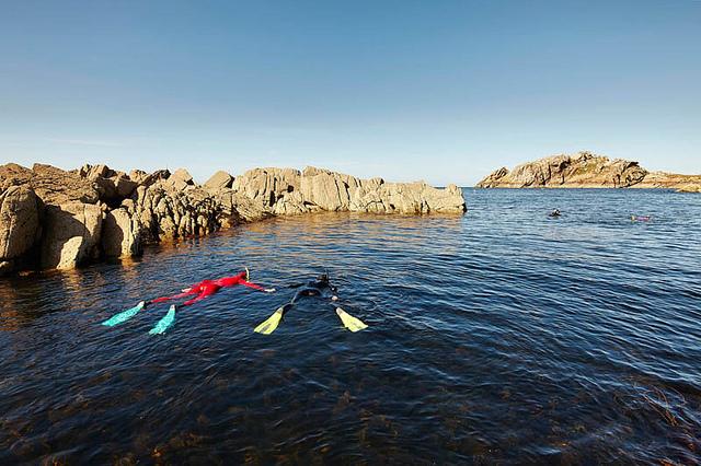 snorkeltochten van Plougasnou Plongée