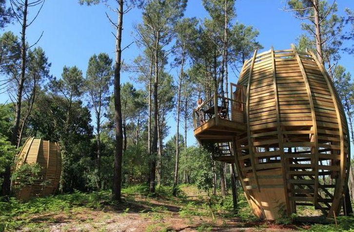 Cap-cabane-boomhutten-in-aquitaine-les-landes