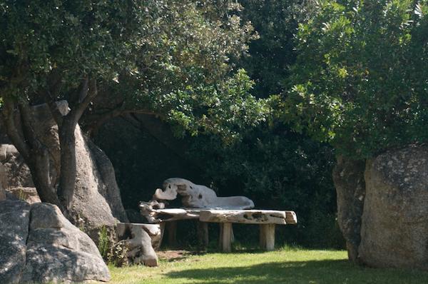 Zengevoel bij hotel A Piatatella in Corsica