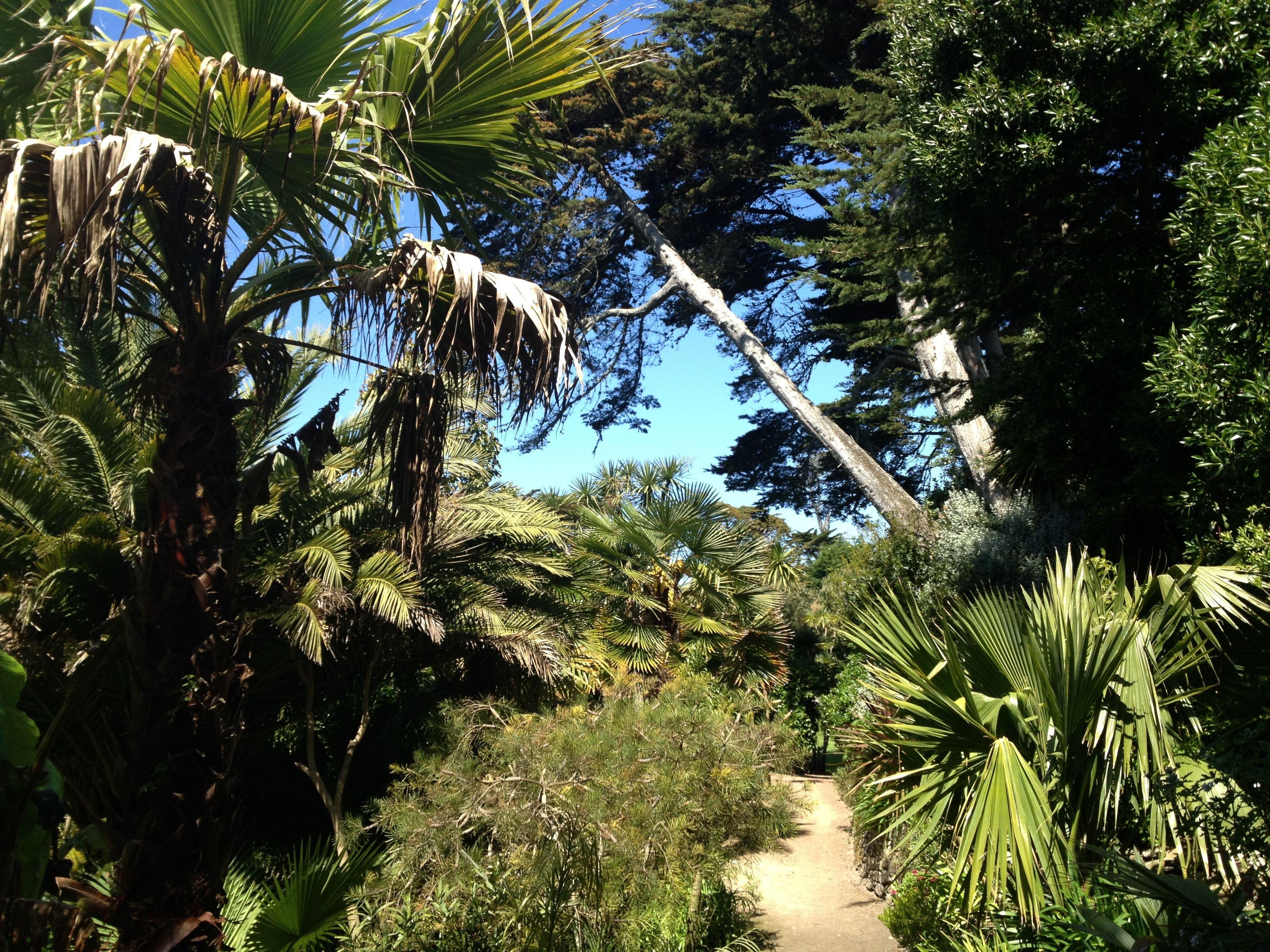 Paradijselijke tuin op ile de batz for Jardin georges delaselle