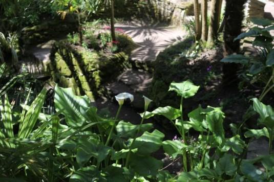5-Botanische-tuin-jardin-georges-delaselle-op-ile-de-batz-bretagne