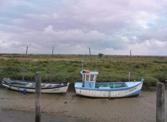 Mornac-sur-Seudre-Charente-Maritime-natuurgebied