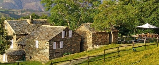 Aubergne Campo di Monte