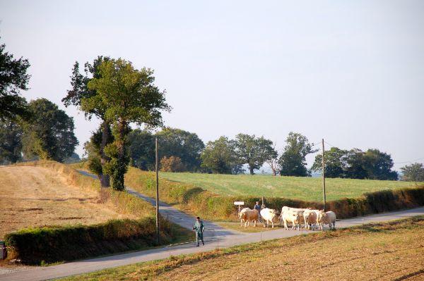 Mas d'en haut glamping in de Creuse -Limousin