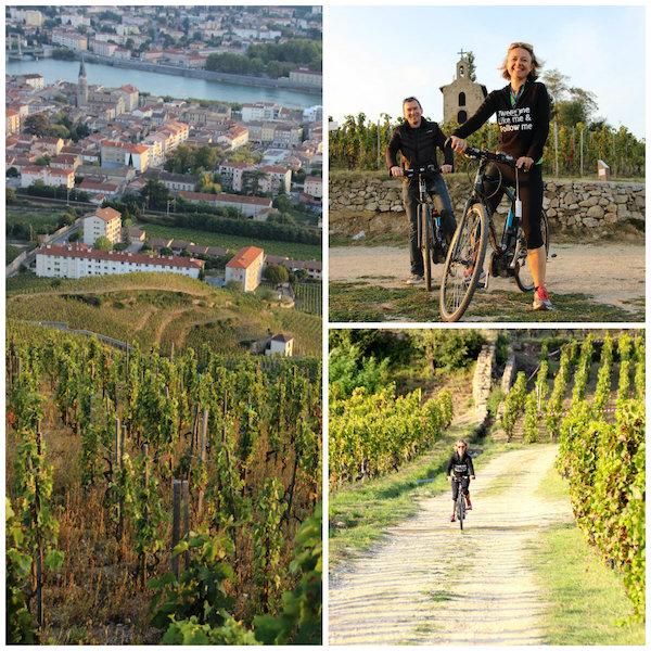 -mountainbike door de wijngaarden van de Rhonevallei langs de ViaRhona