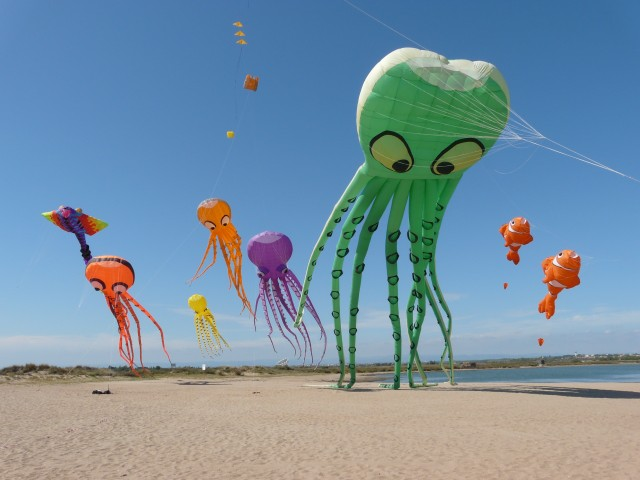 Festival du vent Portiragne