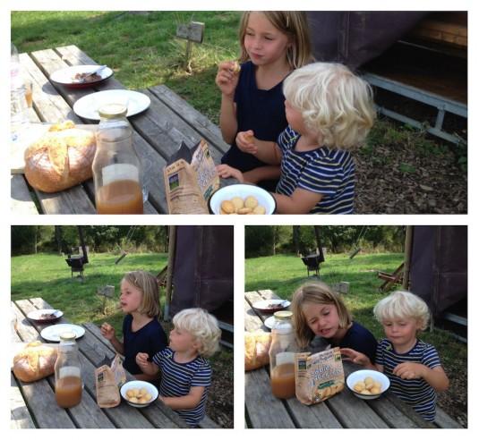 michel et augustin franse koekjes