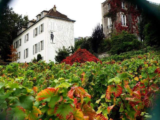 Clos de Montmartre