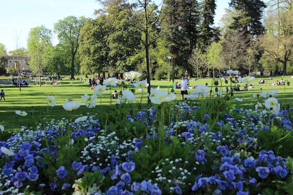 Jardin Publique picknick in het park Bordeaux