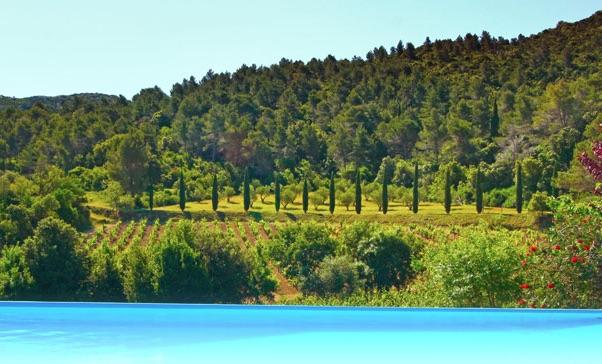 zwembad in Domaine Haut Gleon Languedoc