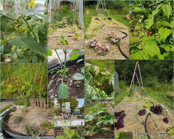 Natuurcamping in de Vogezen
