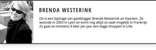 Brenda Westerink Gastblogger