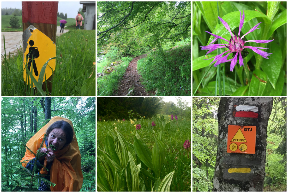 Wandelen in Les Monts Jura