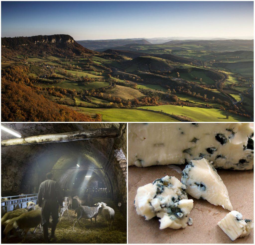 roquefort aveyron schapen kaas