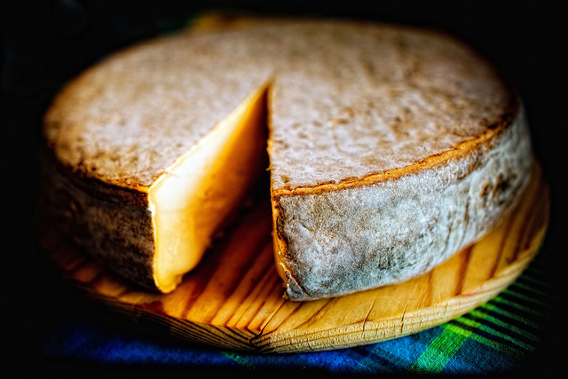 Sainte-nectaire fromage kaas Cantal Auvergne lekkerste kazen uit Frankrijk halfgare