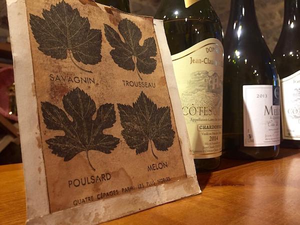 Savagnin druif uit de Jura, verschillende soort druiven voor verschillende wijnen uit de Jura