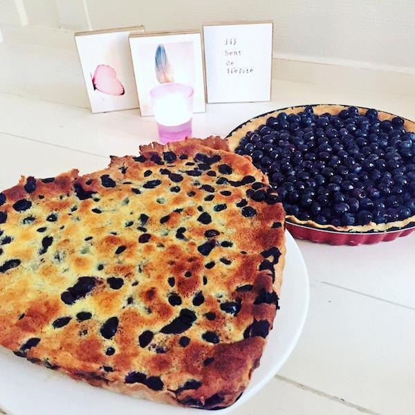 Blauwe bessen taarten