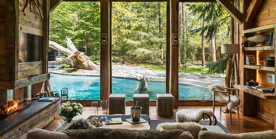 overnachten in een franse dierentuin. Black Bedroom Furniture Sets. Home Design Ideas