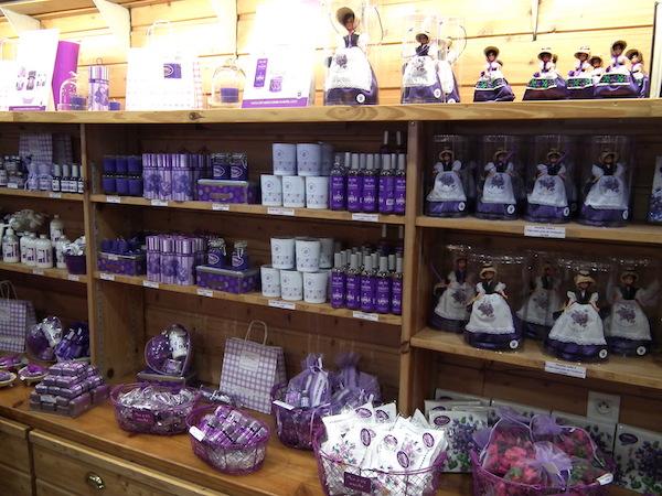 Ultraviolet toulouse leuke winkel op het canal du midi for Maison violette toulouse