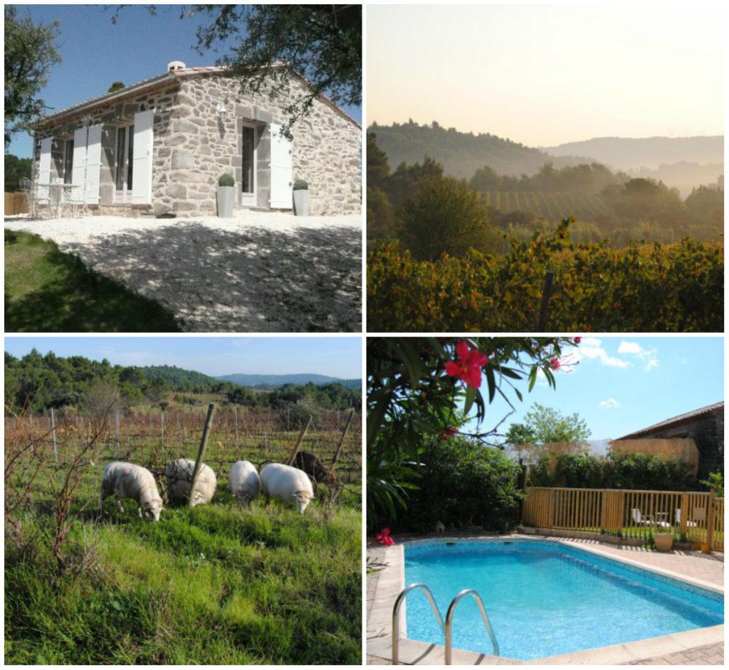 vakantiehuis 4 personen op bio wijngaard zuid-frankrijk