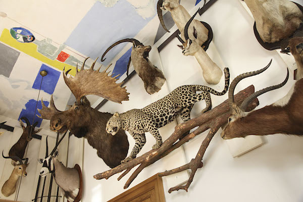 musea parijs marais musee de la chasse