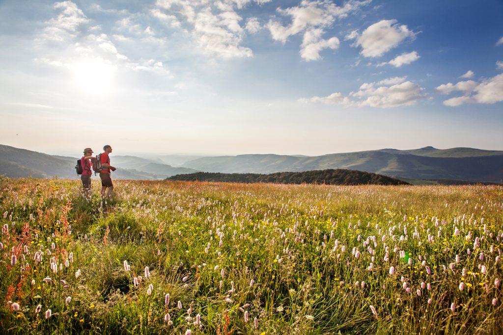 wandelen compostela in Auvergne