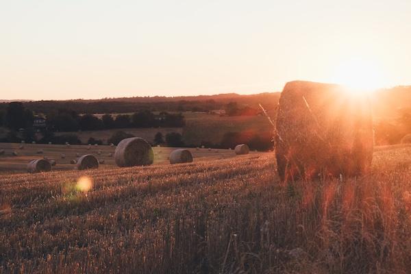 Vakantieplezier op het Franse platteland