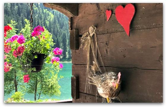 Les Portes du Soleil zomervakantie Franse Alpen bloemen