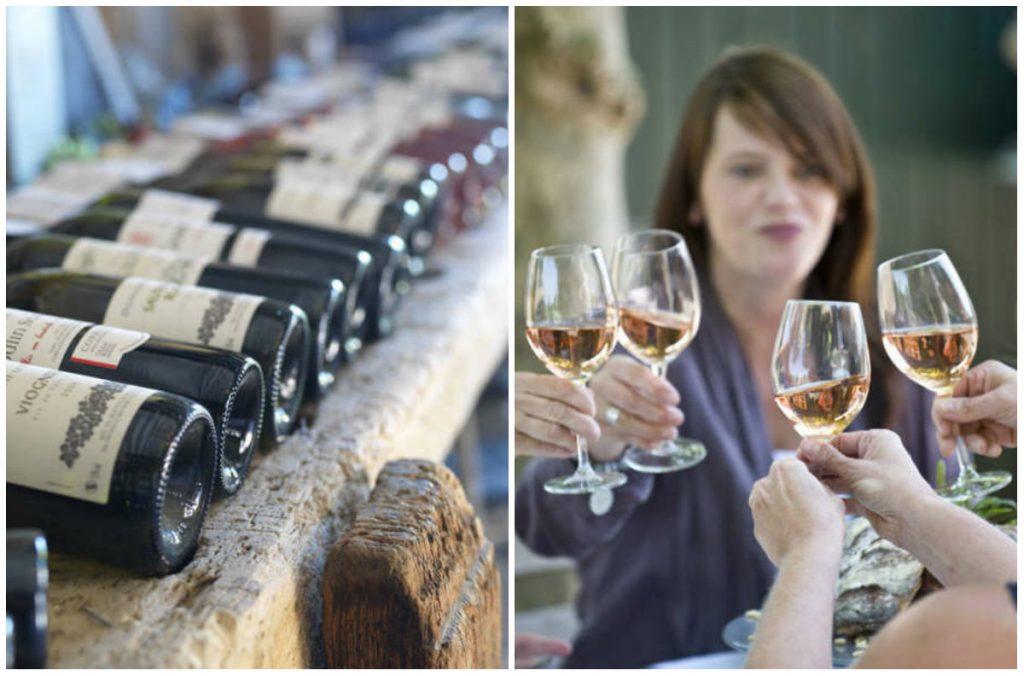 Gasterie Lieve Hemel wijnreis Languedoc