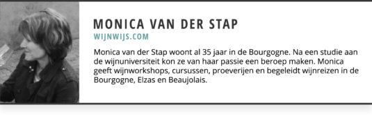 Monica Van Der Stap Gastblogger