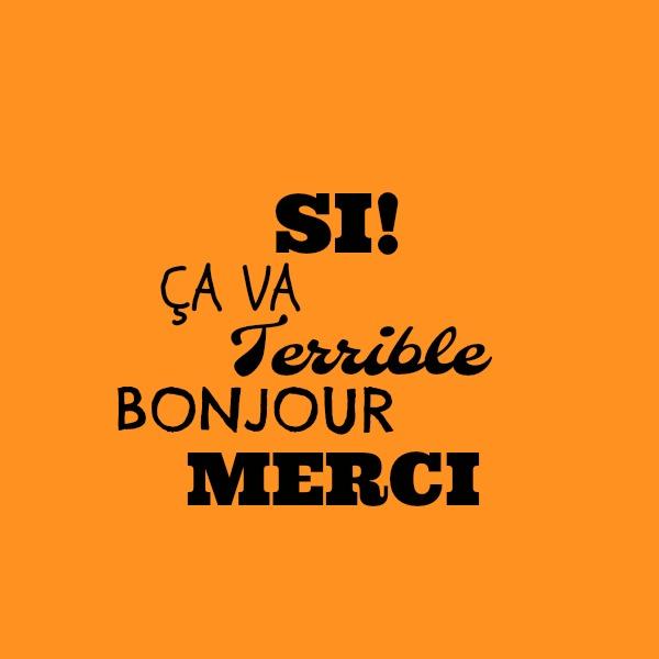 si ca va merci bonjour terrible Franse woorden