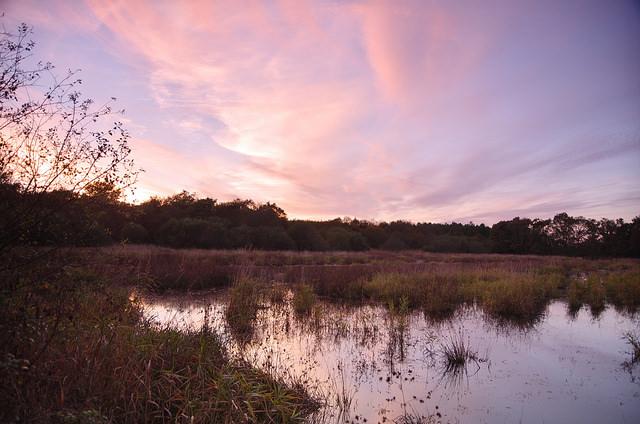 Sologne in de herfst meer
