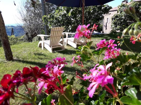 2 stoelen in tuin