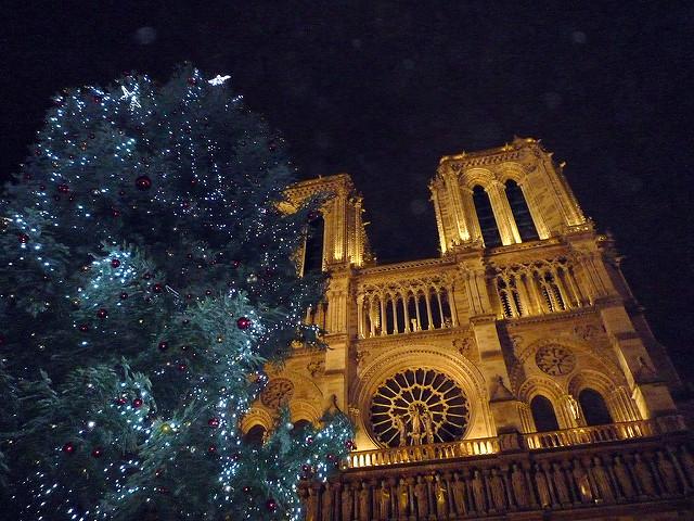 Notre dame kerst in Parijs