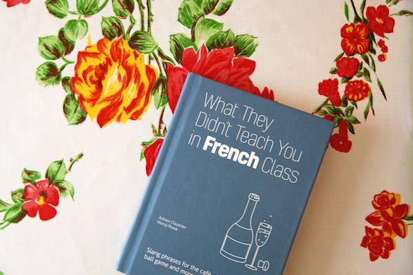 Franse taalgids modern Frans spreektaal