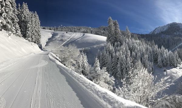 Portes du Soleil ski