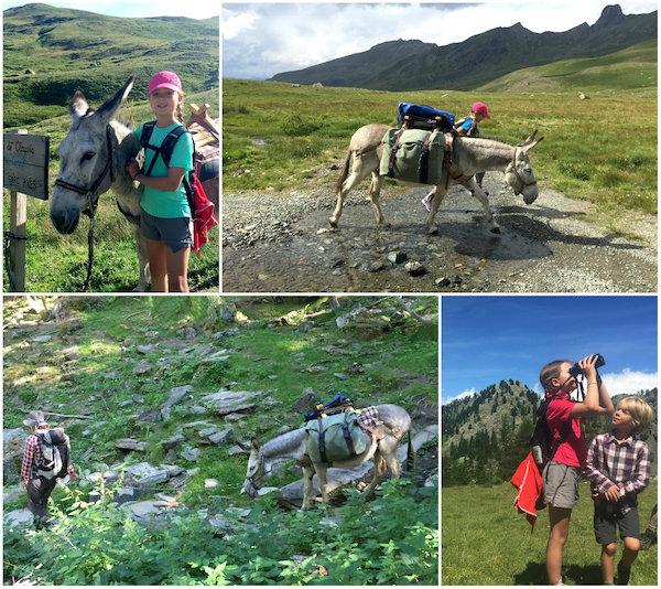 Wandelvakantie met een ezel in de Queyras