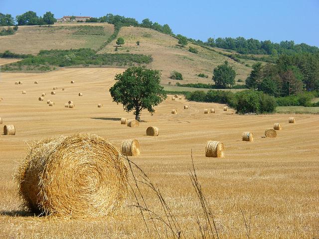 Tarn mooie rustige streek in Frankrijk
