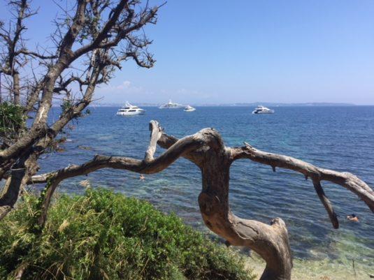 Dagtrip op eiland Sainte Marguerite Cote d'Azur