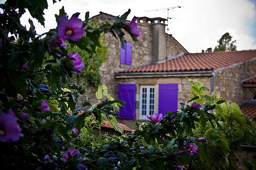 tussenstops in de de Auvergne op weg naar het zuiden Montpeyroux