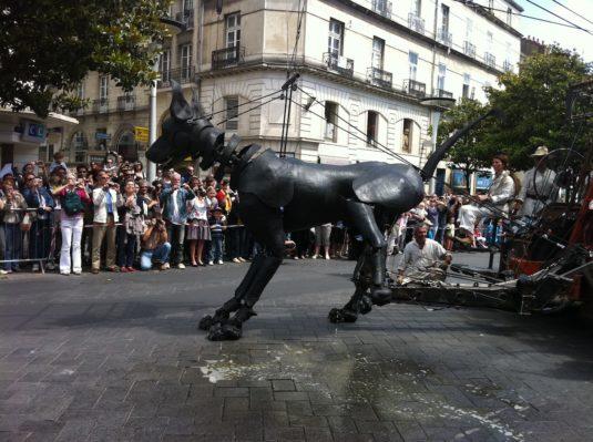 Xolo hond Royal de luxe