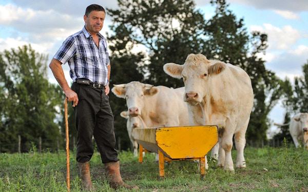 veehouder Franse beroepen
