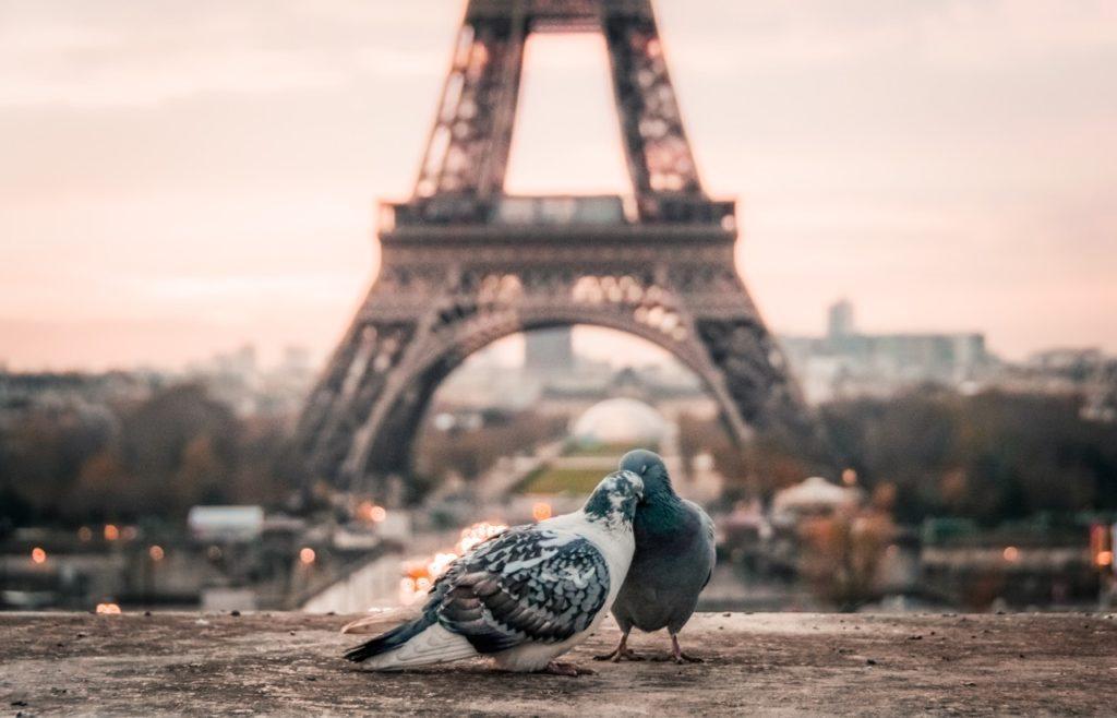 zoenen voor de Eiffeltoren