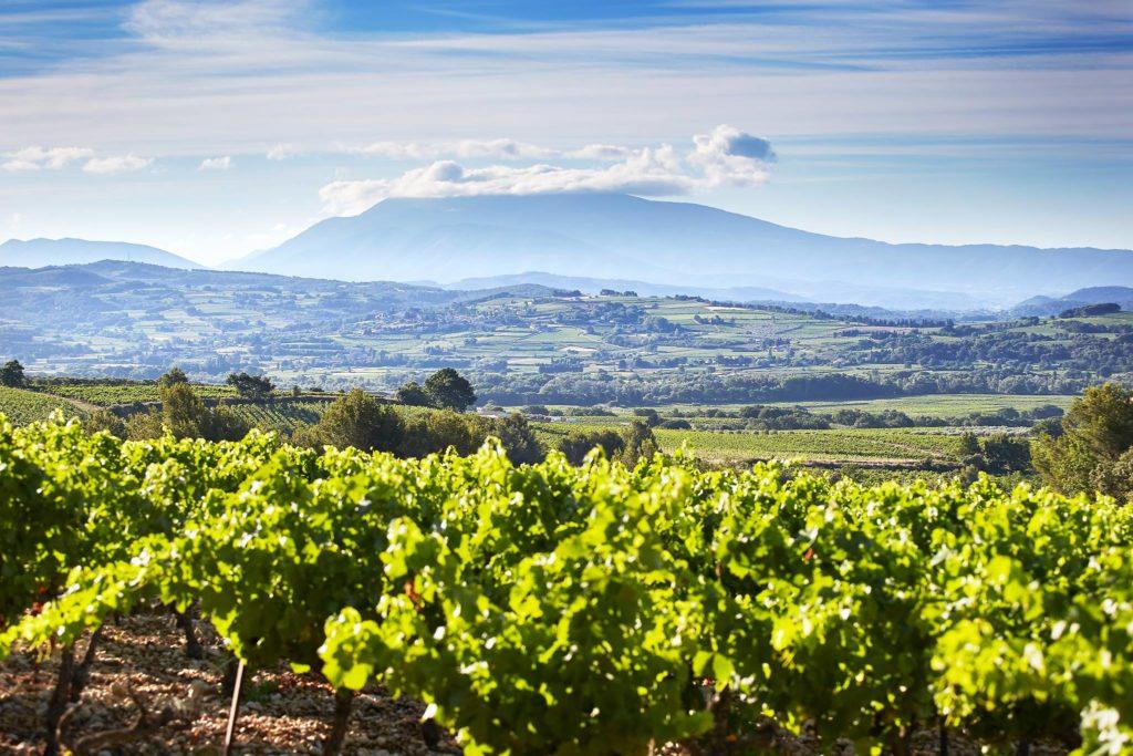 Zuid-Frankrijk Ventoux