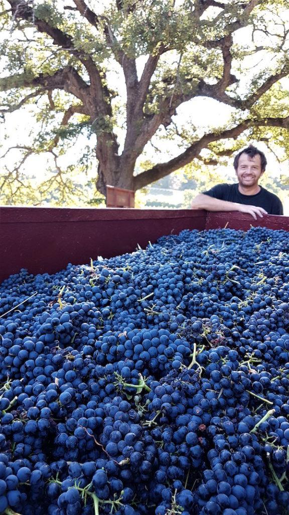 fab fransen Xavier wijnboer in Zuid-Frankrijk
