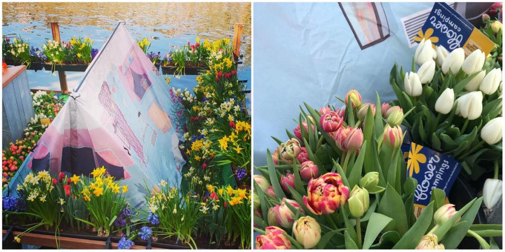 Flower Camping Tente