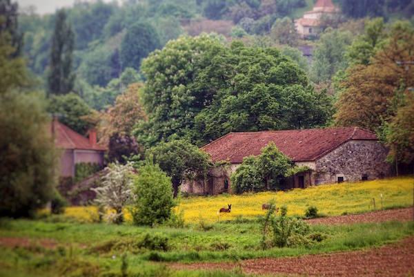 Domaine du Merlet Lot et Garonne