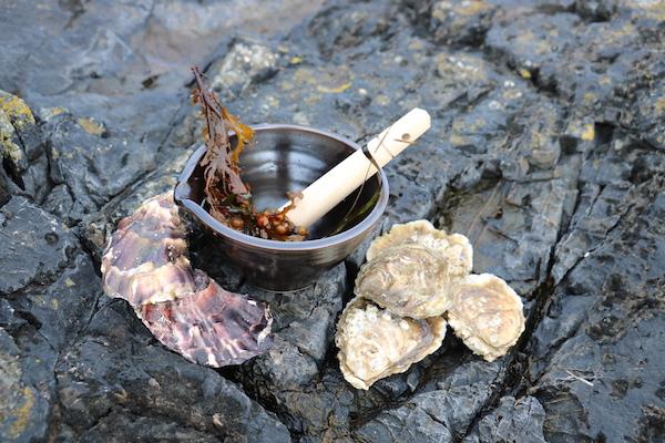 vakantiehuis Bretagne hip design oesters